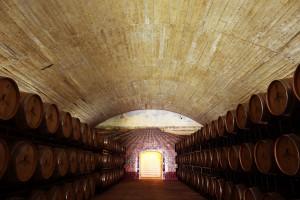 """Foto """"Túnel das Barricas"""" do site www.esporao.com"""